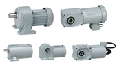 Induction gearmotor
