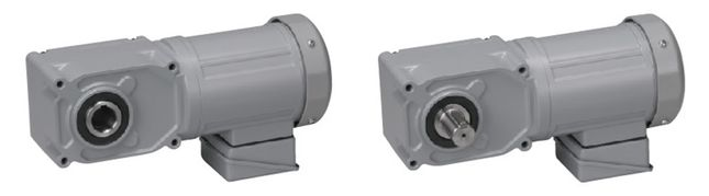 Concentric hollow/solid shaft (F3) gearmotor (0.1kW-2.2kW)